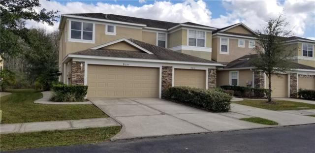 19237 Stone Hedge Drive, Tampa, FL 33647 (MLS #T3152727) :: Team Bohannon Keller Williams, Tampa Properties