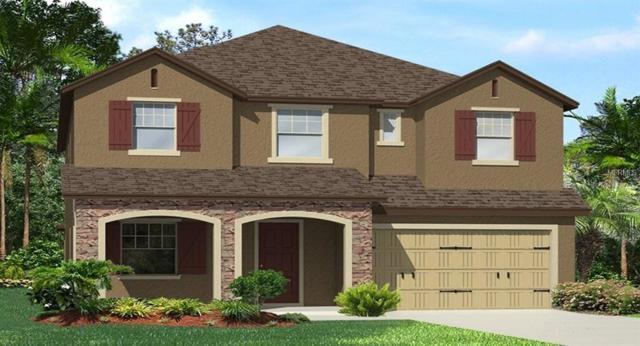 28726 Lucero Lane, Wesley Chapel, FL 33543 (MLS #T3152737) :: Team Bohannon Keller Williams, Tampa Properties