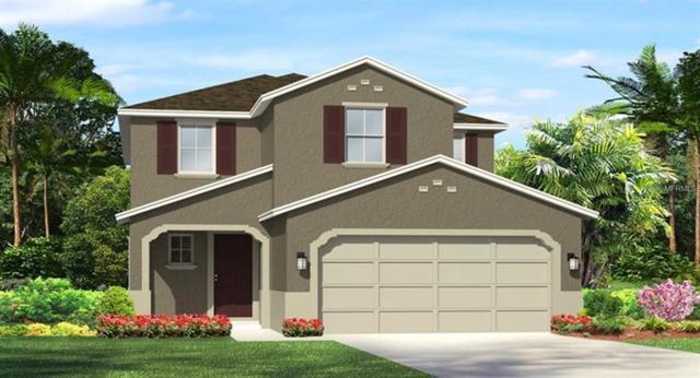 28982 Trevi Place, Wesley Chapel, FL 33543 (MLS #T3152741) :: Team Bohannon Keller Williams, Tampa Properties