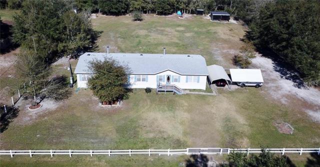 30529 Eastport Drive, Wesley Chapel, FL 33545 (MLS #T3152836) :: Team Bohannon Keller Williams, Tampa Properties