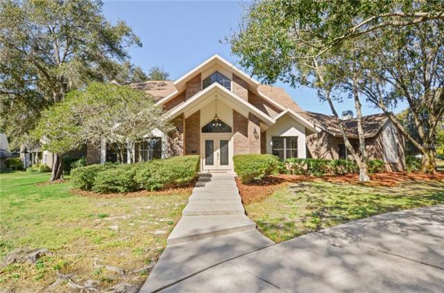 3223 Harvest Moon Drive, Palm Harbor, FL 34683 (MLS #T3152851) :: Burwell Real Estate