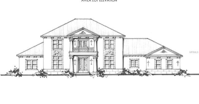 16503 Avila Boulevard, Tampa, FL 33613 (MLS #T3152927) :: Team Bohannon Keller Williams, Tampa Properties