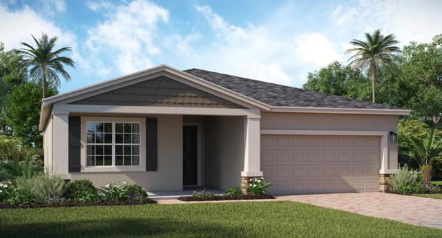 224 Taft Drive, Davenport, FL 33837 (MLS #T3152944) :: Lovitch Realty Group, LLC
