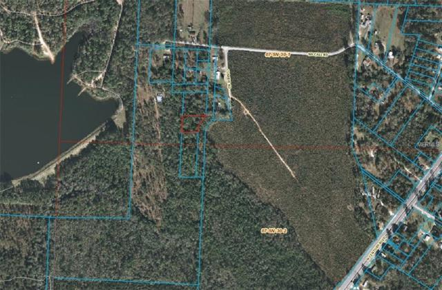End Of Cumbie Rd, CENTURY, FL 32535 (MLS #T3152984) :: Zarghami Group