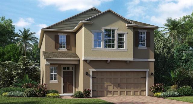 2352 Crescent Moon Street, Kissimmee, FL 34746 (MLS #T3153022) :: Premium Properties Real Estate Services