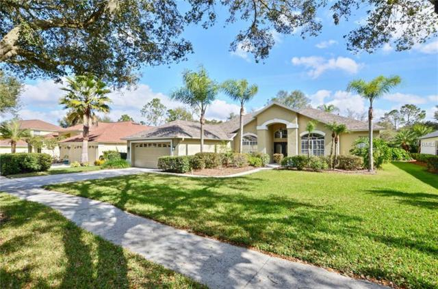 5116 Twin Creeks Dr, Valrico, FL 33596 (MLS #T3153143) :: The Duncan Duo Team