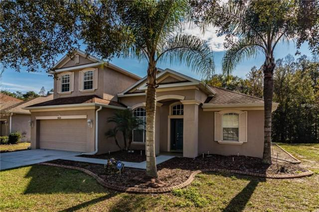 10618 Deerberry Drive, Land O Lakes, FL 34638 (MLS #T3153340) :: Homepride Realty Services