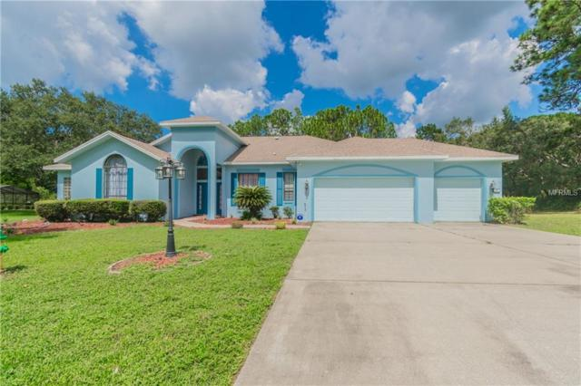 34 Greentree Street, Homosassa, FL 34446 (MLS #T3153360) :: Mark and Joni Coulter | Better Homes and Gardens