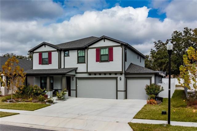722 Kingsfield Reserve Avenue, Brandon, FL 33511 (MLS #T3153429) :: Griffin Group