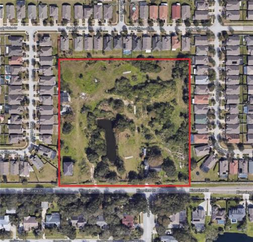 8714 Riverview Drive, Riverview, FL 33578 (MLS #T3153652) :: Rabell Realty Group