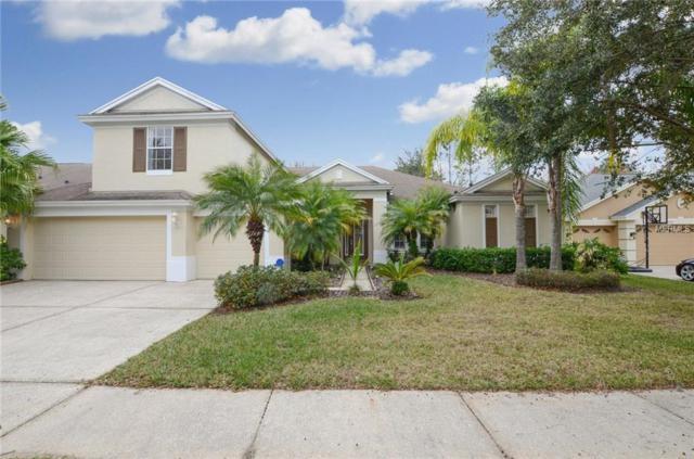 19311 Autumn Woods Avenue, Tampa, FL 33647 (MLS #T3153736) :: Team Bohannon Keller Williams, Tampa Properties