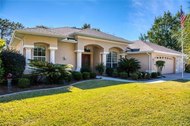9 Dahoon Court N, Homosassa, FL 34446 (MLS #T3153840) :: Griffin Group