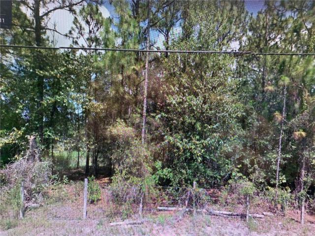 6260 Drew Street, Brooksville, FL 34604 (MLS #T3154091) :: Griffin Group