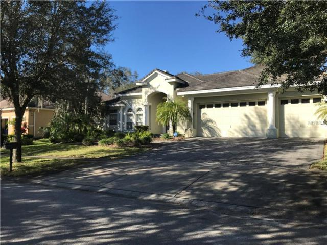 6116 Avocetridge Drive, Lithia, FL 33547 (MLS #T3154134) :: Cartwright Realty