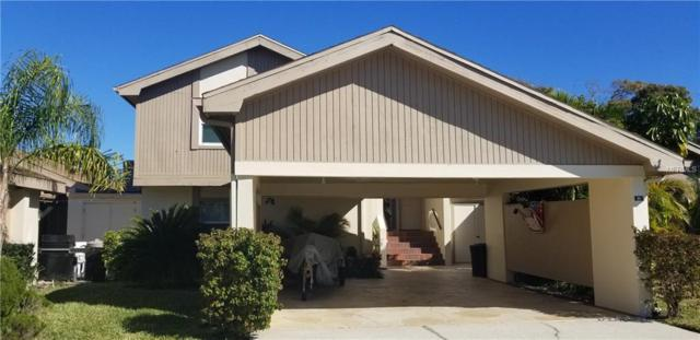 20 Eric Court, Oldsmar, FL 34677 (MLS #T3154385) :: SANDROC Group