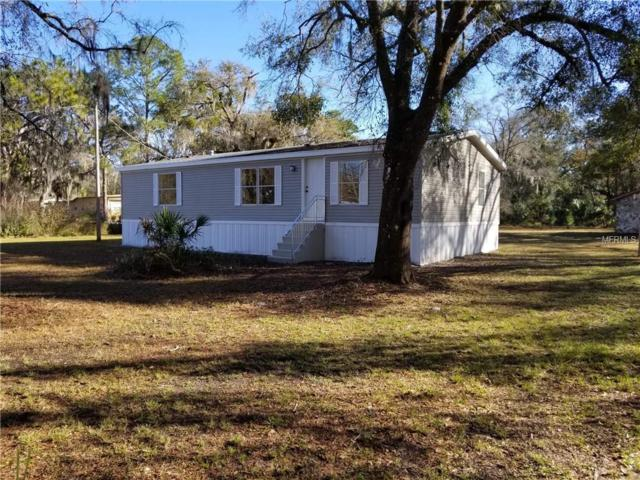 4417 Pine Street, Valrico, FL 33596 (MLS #T3154733) :: RE/MAX Realtec Group