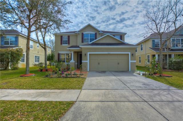 7212 Bridgeview Drive, Wesley Chapel, FL 33545 (MLS #T3154925) :: Team Bohannon Keller Williams, Tampa Properties
