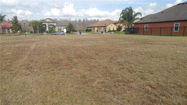 8514 Tradescant Loop, Land O Lakes, FL 34637 (MLS #T3155025) :: Cartwright Realty