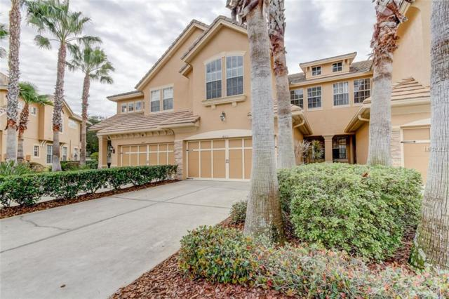 14505 Mirabelle Vista Circle, Tampa, FL 33626 (MLS #T3155032) :: Cartwright Realty