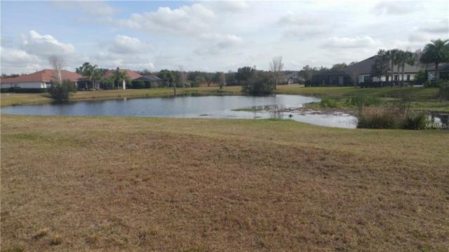 8652 Bonica Place, Land O Lakes, FL 34637 (MLS #T3155071) :: Cartwright Realty