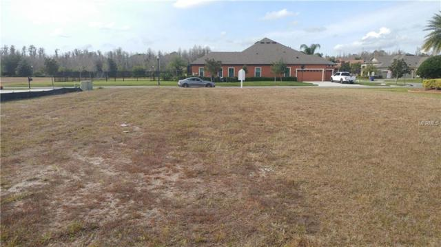 20228 Lace Cascade Road, Land O Lakes, FL 34637 (MLS #T3155117) :: Cartwright Realty
