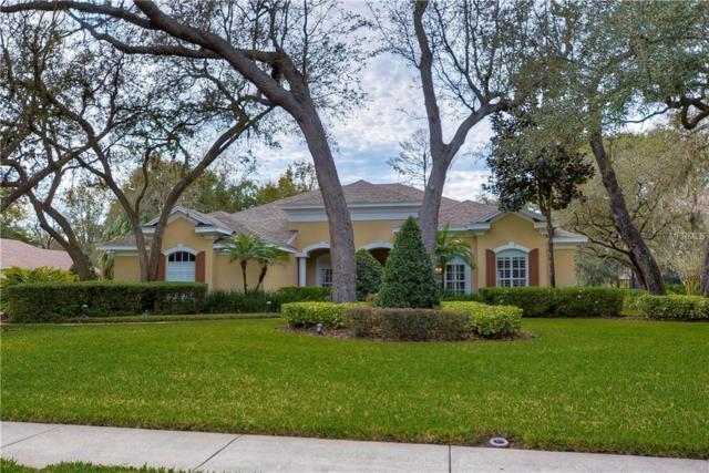 6121 Kingbird Manor Drive, Lithia, FL 33547 (MLS #T3155134) :: Dalton Wade Real Estate Group