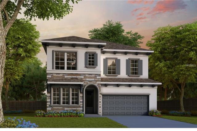 3616 W Leona Street, Tampa, FL 33629 (MLS #T3155294) :: Andrew Cherry & Company