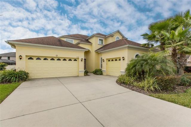 3529 Diamond Falls Circle, Land O Lakes, FL 34638 (MLS #T3155296) :: Premium Properties Real Estate Services