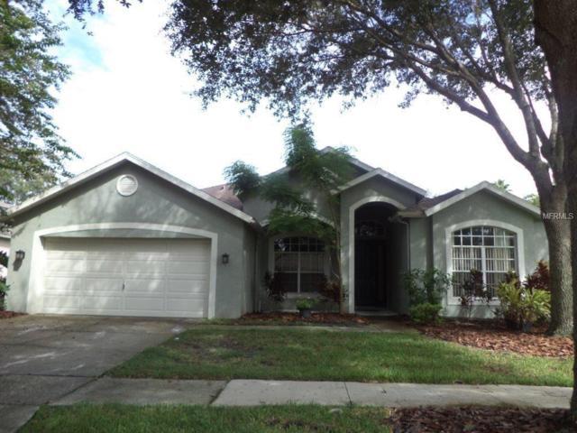 8509 Kings Rail Way, Tampa, FL 33647 (MLS #T3155299) :: Team Bohannon Keller Williams, Tampa Properties