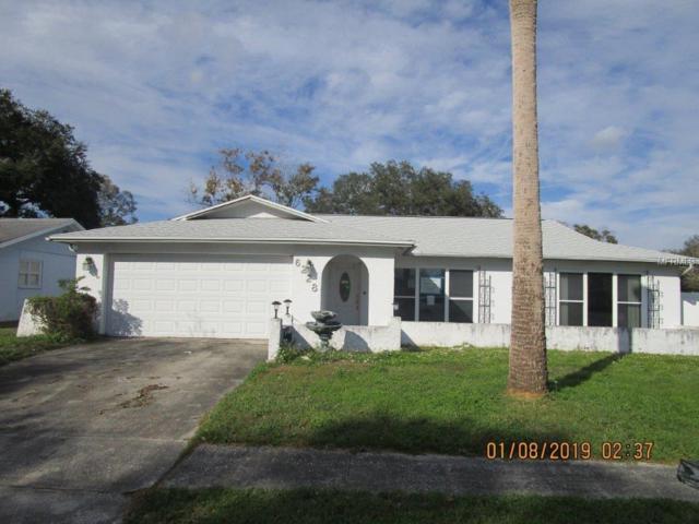 6228 Frost Drive, Tampa, FL 33625 (MLS #T3155319) :: Team Bohannon Keller Williams, Tampa Properties