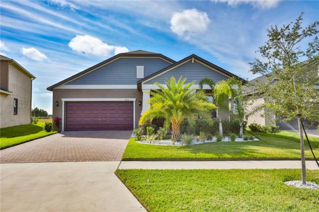 10133 Count Fleet Drive, Ruskin, FL 33573 (MLS #T3155378) :: The Duncan Duo Team