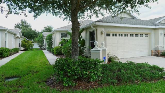 3315 Chapel Creek Circle, Wesley Chapel, FL 33544 (MLS #T3155428) :: Team Bohannon Keller Williams, Tampa Properties