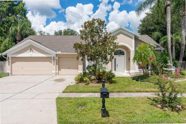 8445 Ridgebrook Circle, Odessa, FL 33556 (MLS #T3155434) :: Team Bohannon Keller Williams, Tampa Properties