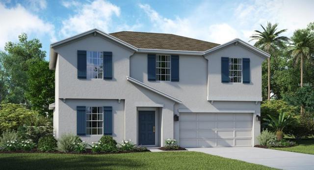 213 Taft Drive, Davenport, FL 33837 (MLS #T3155637) :: RE/MAX Realtec Group