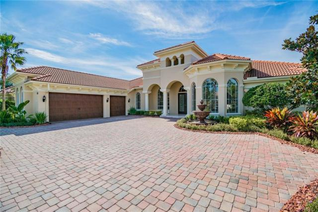 11806 Shire Wycliffe Court, Tampa, FL 33626 (MLS #T3155658) :: Andrew Cherry & Company
