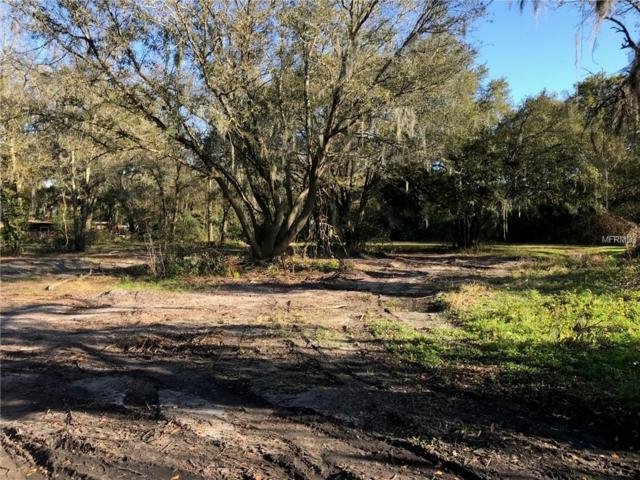 Pevetty Drive, Plant City, FL 33563 (MLS #T3155699) :: Griffin Group