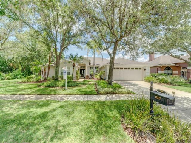 12317 Ashville Drive, Tampa, FL 33626 (MLS #T3155782) :: The Duncan Duo Team