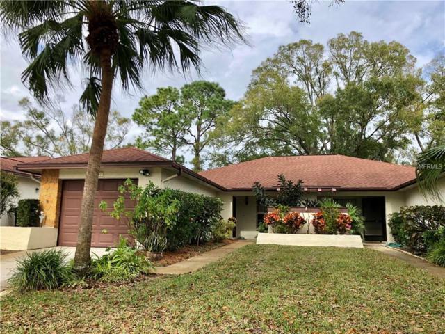 3441 Maclaren Drive, Palm Harbor, FL 34684 (MLS #T3155789) :: The Duncan Duo Team
