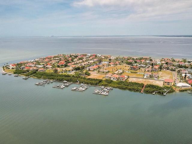6111 Lagomar Lane, Apollo Beach, FL 33572 (MLS #T3155877) :: Premium Properties Real Estate Services