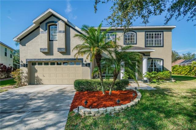12808 Pacifica Place, Tampa, FL 33625 (MLS #T3155915) :: Team Bohannon Keller Williams, Tampa Properties