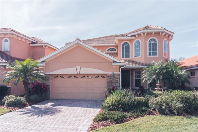 10841 Cory Lake Drive, Tampa, FL 33647 (MLS #T3155978) :: Team Bohannon Keller Williams, Tampa Properties