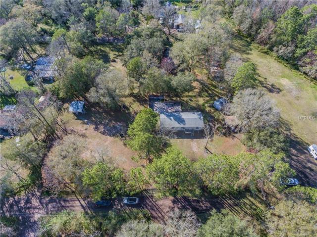 1835 Anna Road, Odessa, FL 33556 (MLS #T3156136) :: Team Bohannon Keller Williams, Tampa Properties
