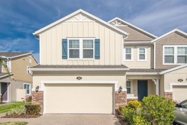 18831 Ulmus Street, Lutz, FL 33558 (MLS #T3156254) :: Baird Realty Group