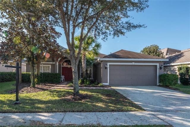 16319 Bridgelawn Avenue, Lithia, FL 33547 (MLS #T3156261) :: Dalton Wade Real Estate Group
