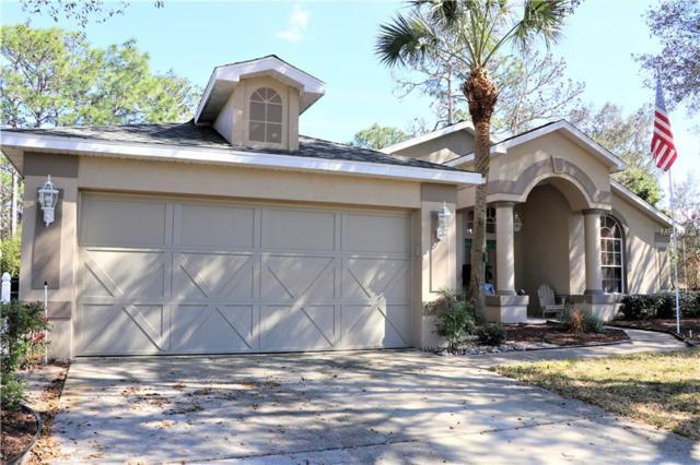 11 Black Willow Court N, Homosassa, FL 34446 (MLS #T3156291) :: Griffin Group