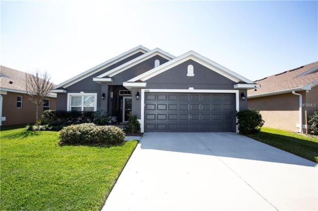 14426 Edinburgh Moor Drive, Wimauma, FL 33598 (MLS #T3156341) :: Dalton Wade Real Estate Group