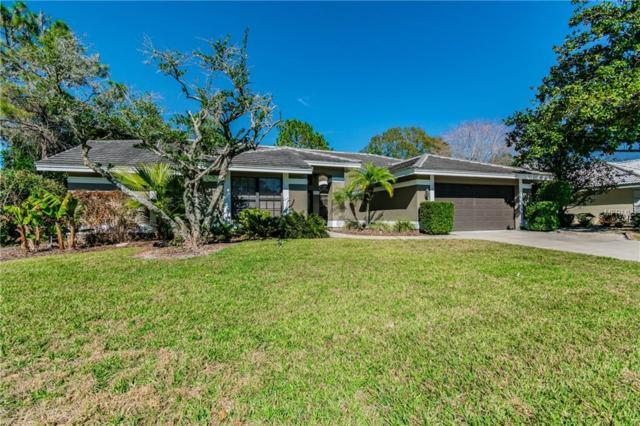 30231 Fairway Drive, Wesley Chapel, FL 33543 (MLS #T3156378) :: RE/MAX Realtec Group