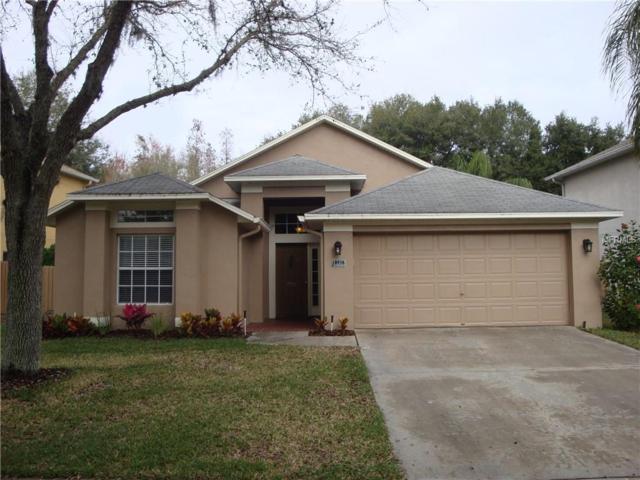 18938 Wood Sage Drive, Tampa, FL 33647 (MLS #T3156424) :: Team Bohannon Keller Williams, Tampa Properties