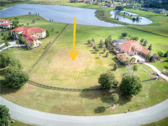10741 Osprey Landing Way, Thonotosassa, FL 33592 (MLS #T3156436) :: Griffin Group