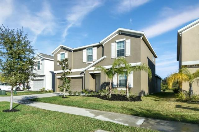 10647 Standing Stone Drive, Wimauma, FL 33598 (MLS #T3156481) :: The Duncan Duo Team
